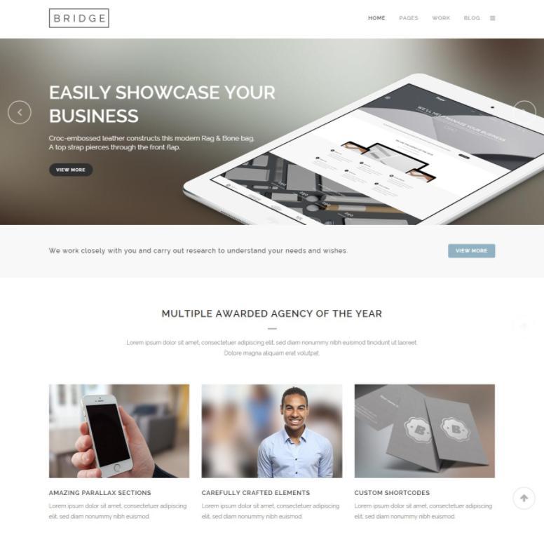 mẫu thiết kế website spa Bridge